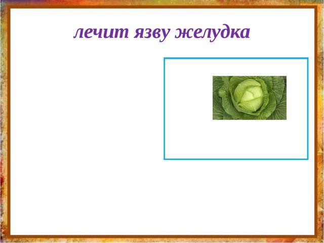 лечит язву желудка http://aida.ucoz.ru