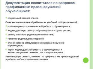 Документация воспитателя по вопросам профилактики правонарушений обучающихся:
