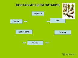 hello_html_121a48bd.jpg