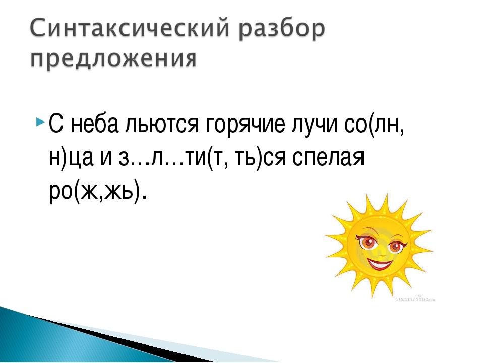 С неба льются горячие лучи со(лн, н)ца и з…л…ти(т, ть)ся спелая ро(ж,жь).