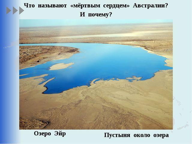 Что называют «мёртвым сердцем» Австралии? И почему? Озеро Эйр Пустыня около о...