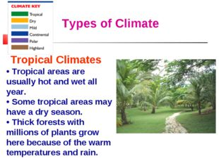Types of Climate Tropical Climates • Tropical areas are usually hot and wet a