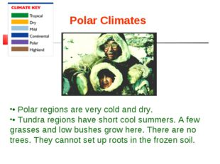 Polar Climates • Polar regions are very cold and dry. • Tundra regions have s