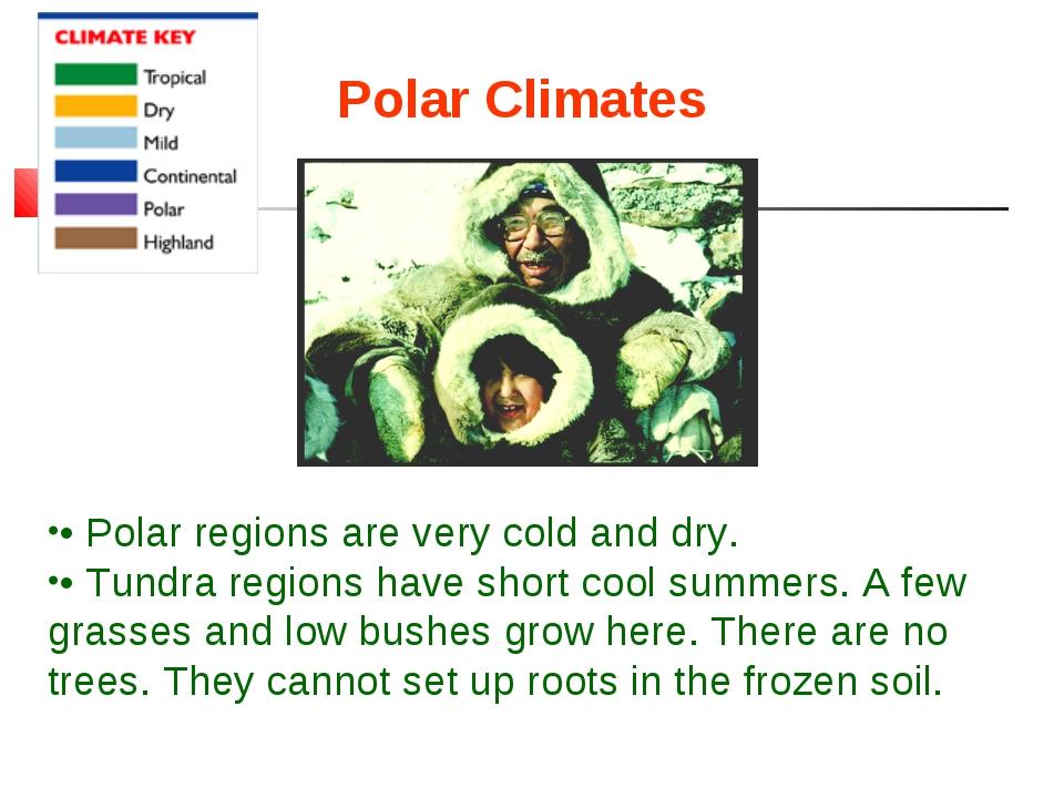 Polar Climates • Polar regions are very cold and dry. • Tundra regions have s...