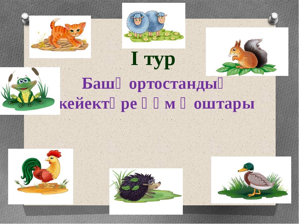 I тур Башҡортостандың кейектәре һәм ҡоштары