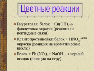 Биуретовая: белок + Сu(ОН)2 фиолетовая окраска (реакция на пептидные связи)