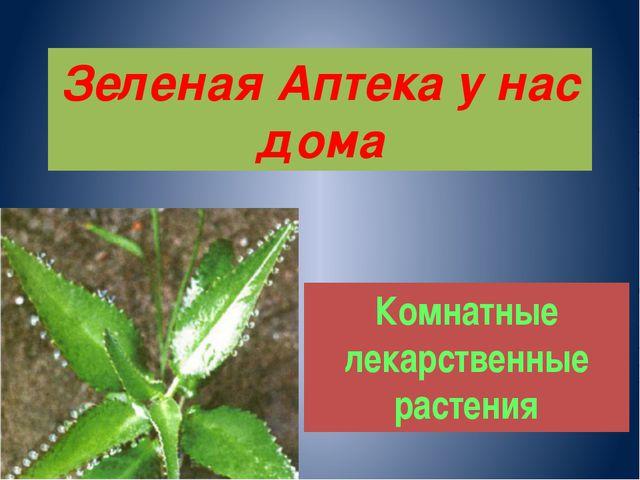Зеленая Аптека у нас дома Комнатные лекарственные растения