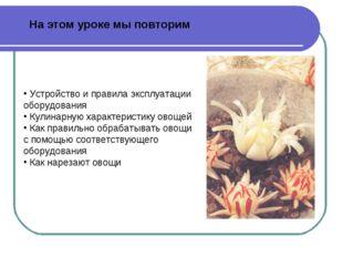 Устройство и правила эксплуатации оборудования Кулинарную характеристику ово
