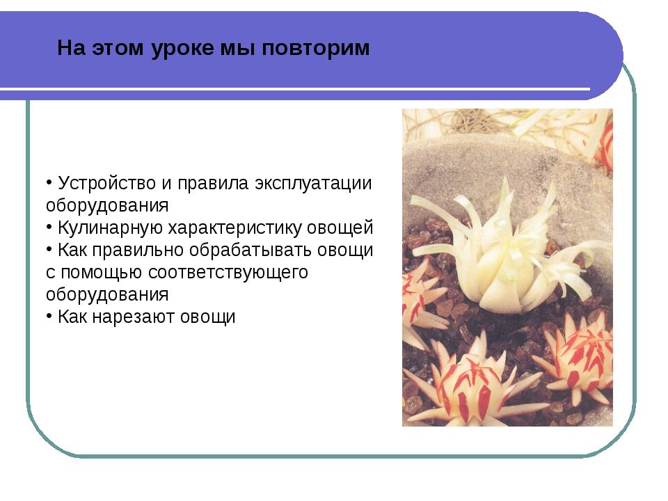 Устройство и правила эксплуатации оборудования Кулинарную характеристику ово...