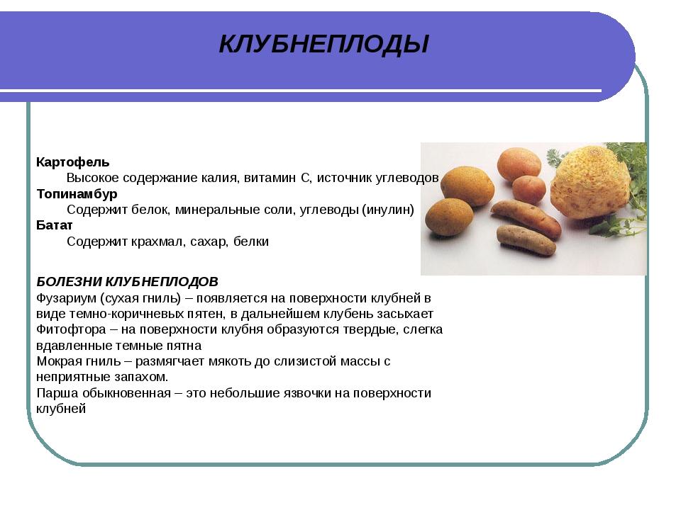 КЛУБНЕПЛОДЫ Картофель Высокое содержание калия, витамин С, источник углеводов...