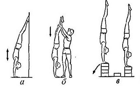 http://www.cnopm.ru/img/gymnastics/risunok_1_4.jpg