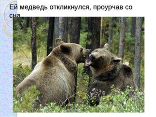 Ей медведь откликнулся, проурчав со сна.