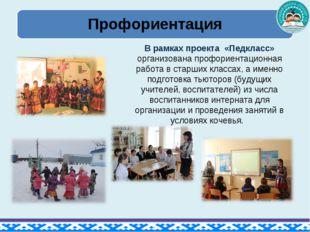 В рамках проекта «Педкласс» организована профориентационная работа в старших