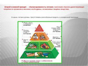Второй основной принцип — сбалансированность питания, наилучшим образом удов