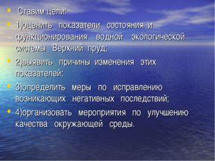 Ставим цели: 1)оценить показатели состояния и функционирования водной эколог