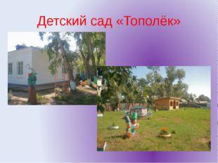Детский сад «Тополёк»