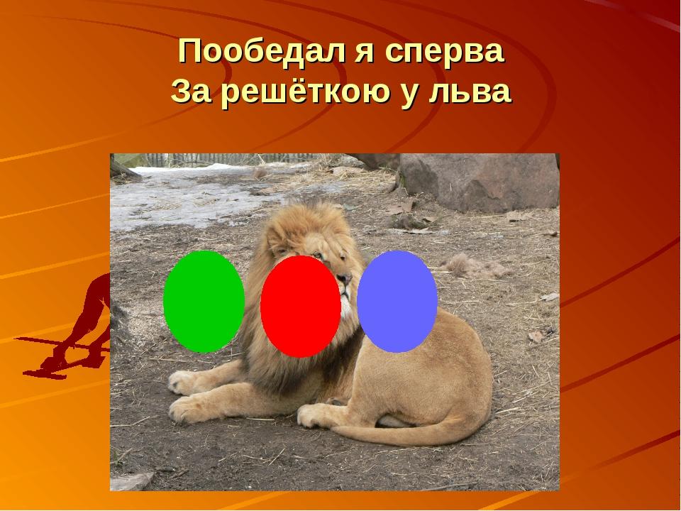 Пообедал я сперва За решёткою у льва