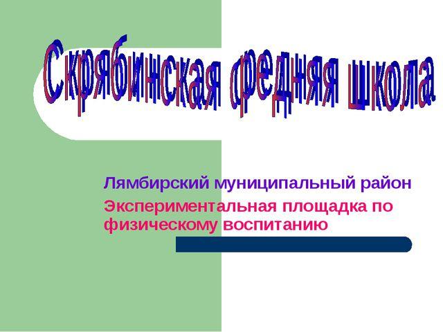 Лямбирский муниципальный район Экспериментальная площадка по физическому восп...