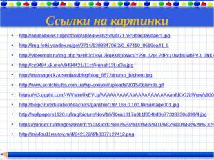 Ссылки на картинки http://animalfotos.ru/photo/4b/4bfe4584625d2f9717ec8b0e3a9