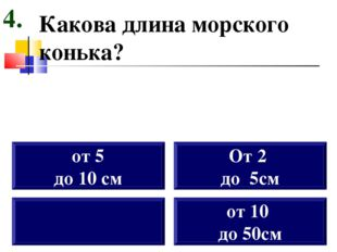Какова длина морского конька? от 5 до 10 см От 2 до 5см 4. от 10 до 50см