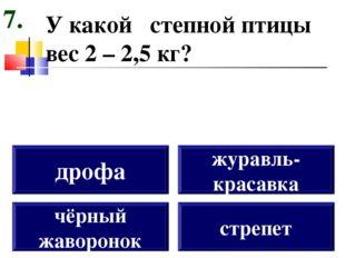 У какой степной птицы вес 2 – 2,5 кг? чёрный жаворонок дрофа журавль- красавк