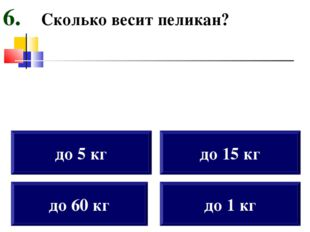 Сколько весит пеликан? до 60 кг до 5 кг до 15 кг до 1 кг 6.