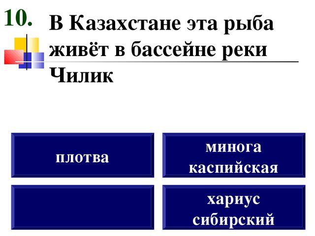 В Казахстане эта рыба живёт в бассейне реки Чилик плотва минога каспийская ха...