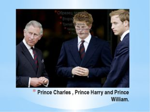 Prince Charles , Prince Harry and Prince William.