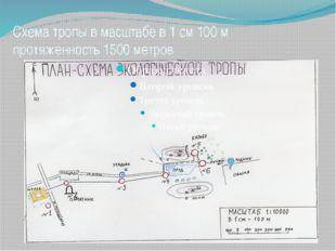 Схема тропы в масштабе в 1 см 100 м протяженность 1500 метров