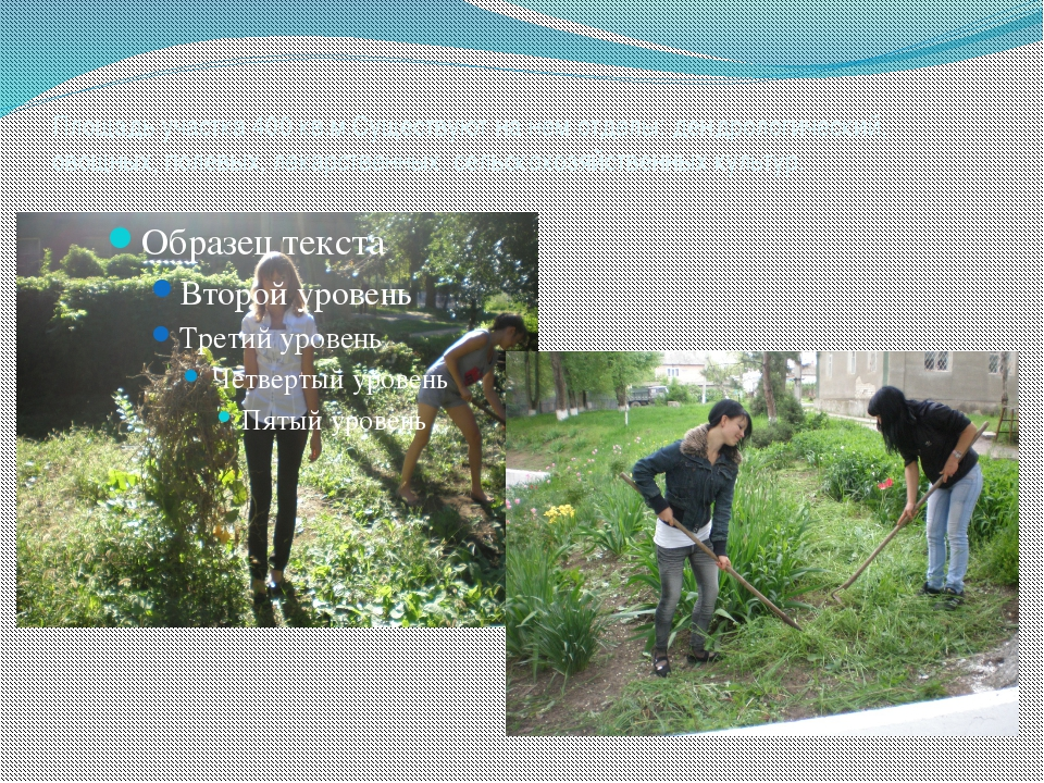 Площадь участка 400 кв.м.Существуют на нем отделы: дендрологический, овощных,...