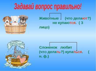Животные (что делают?) не купаются. ( 3 лицо) Слоненок любит (что делать?) ку