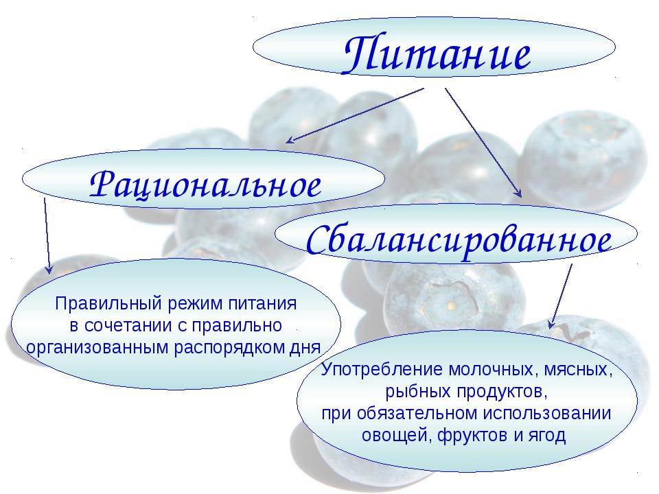 Питание Сбалансированное Рациональное Правильный режим питания в сочетании с...