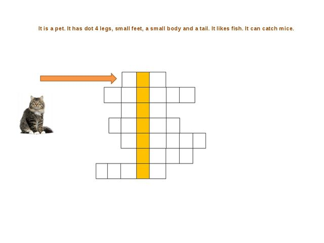 It is a pet. It has dot 4 legs, small feet, a small body and a tail. It like...