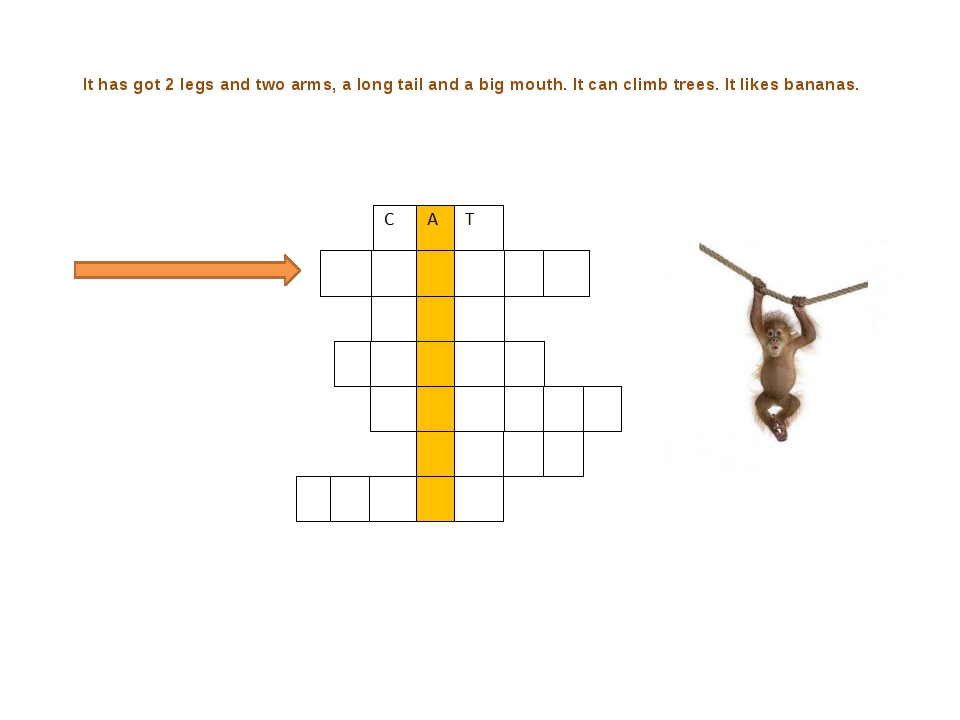 It has got 2 legs and two arms, a long tail and a big mouth. It can climb tr...