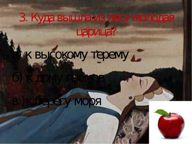 3. Куда вышла из лесу молодая царица? а) к высокому терему б) к дому гномов в...