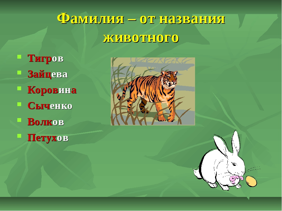 Фамилия – от названия животного Тигров Зайцева Коровина Сыченко Волков Петухов