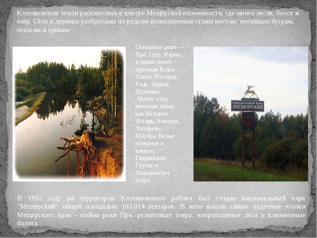 Клепиковские земли раскинулись в центре Мещёрской низменности, где много лесо...