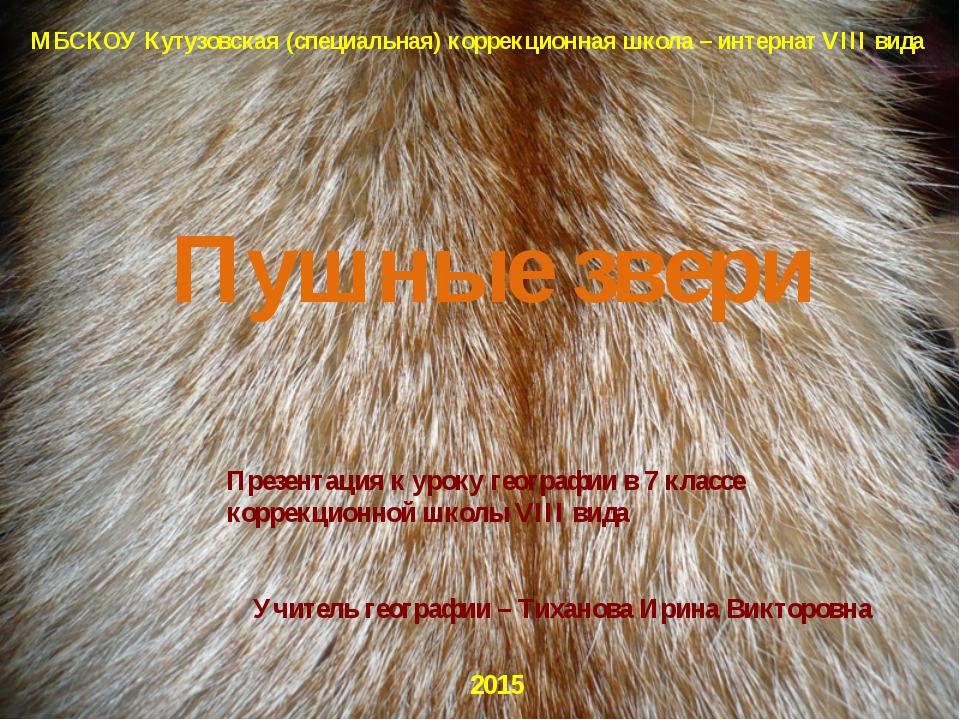МБСКОУ Кутузовская (специальная) коррекционная школа – интернат VIII вида Пуш...