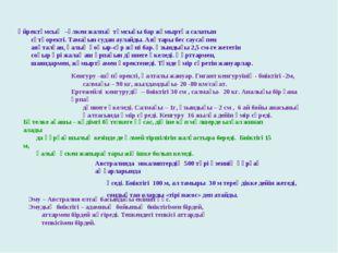 Үйректұмсық –үлкен жалпақ тұмсығы бар жұмыртқа салатын сүтқоректі. Тамағын су