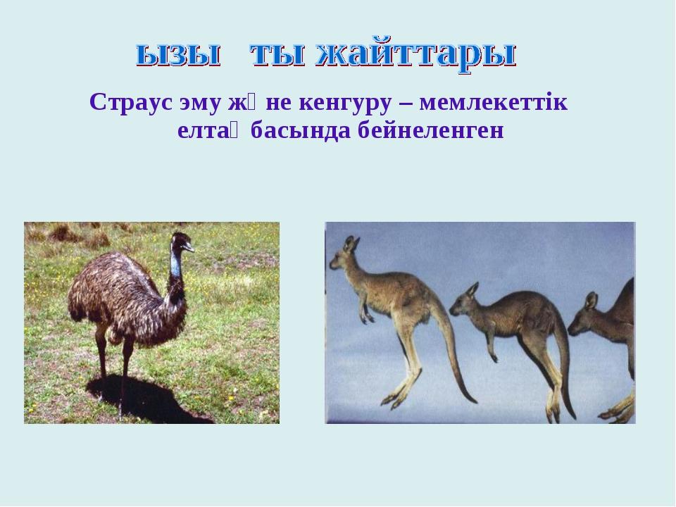 Страус эму және кенгуру – мемлекеттік елтаңбасында бейнеленген