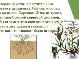 «В некотором царстве, в растительном государстве в деревеньке Мятлик жил был