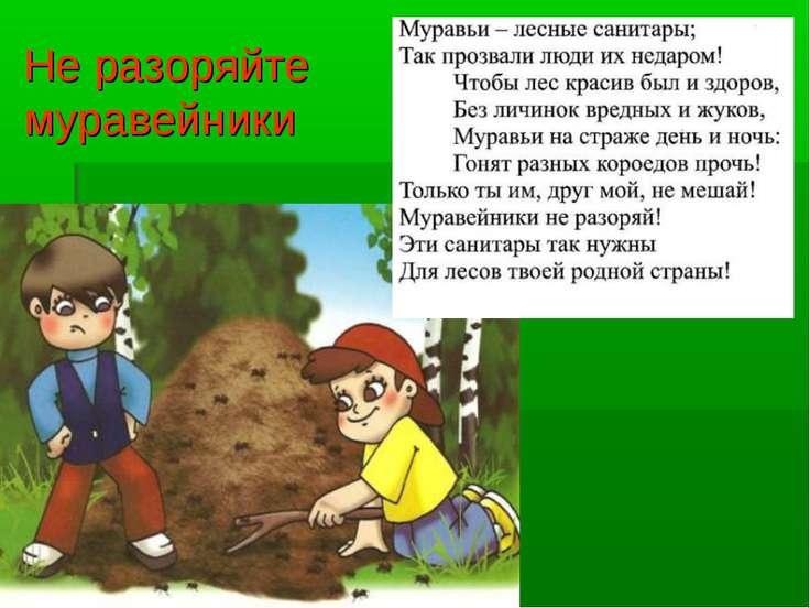 C:\Users\Юрий\Desktop\мам раб фото\олимпаувер.jpg