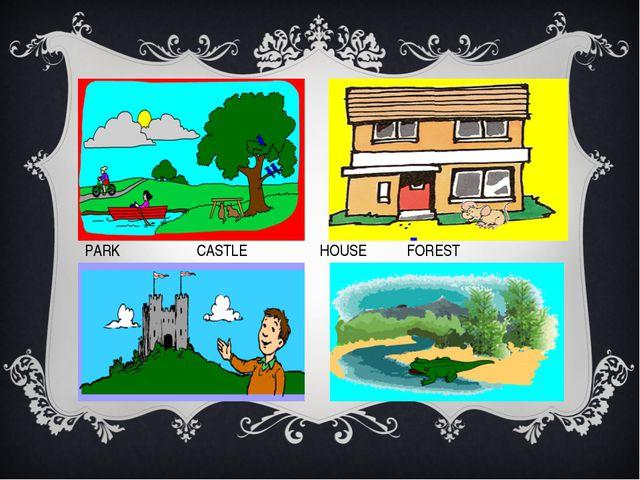 PARK CASTLE HOUSE FOREST