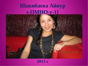 Шакибаева Айнур з-ПМНО-у-11 2013 г