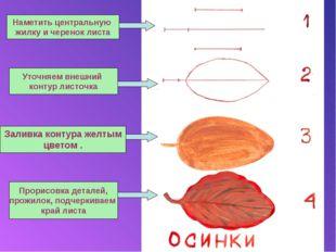 Наметить центральную жилку и черенок листа Уточняем внешний контур листочка З