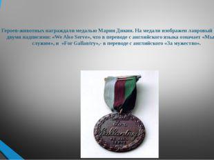 Героев-животных награждали медалью Марии Дикин. На медали изображен лавровый