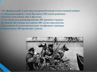 По официальной статистике во время Великой отечественной войны: 1.Собаки выт