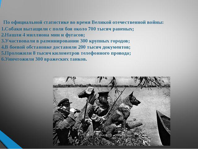 По официальной статистике во время Великой отечественной войны: 1.Собаки выт...
