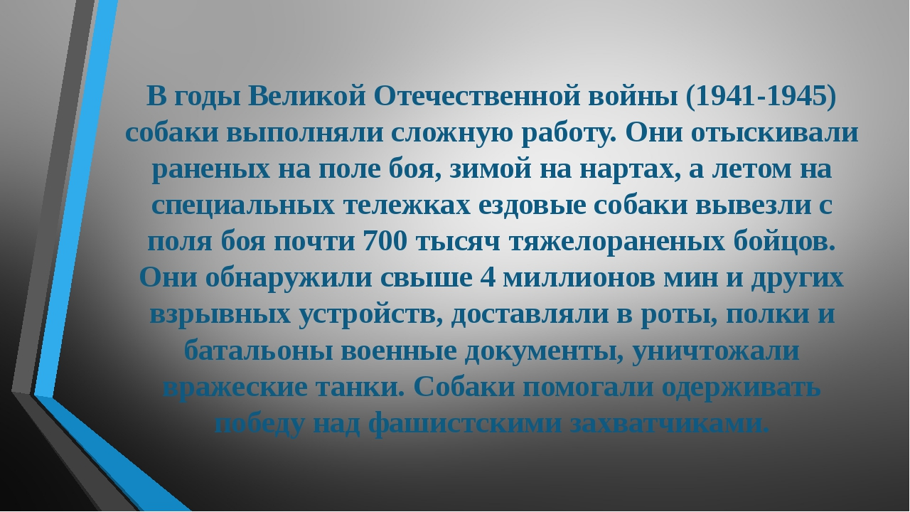В годы Великой Отечественной войны (1941-1945) собаки выполняли сложную работ...