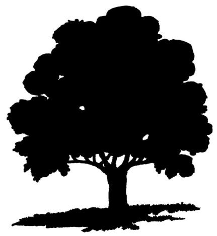 C:\Users\Ильмира\Desktop\tree-silhouettes-3.jpg